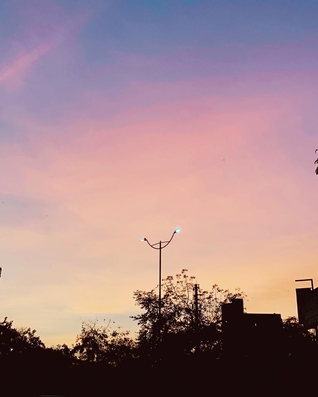// Nature's Pixels // #amdavad